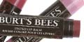 Free Burt's Bees Hibiscus Tinted Lip Balm
