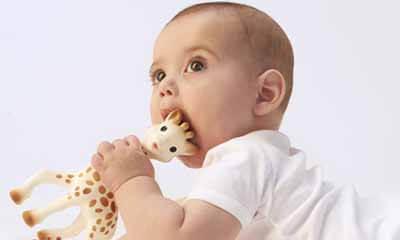 Free Giraffe Teething Toy