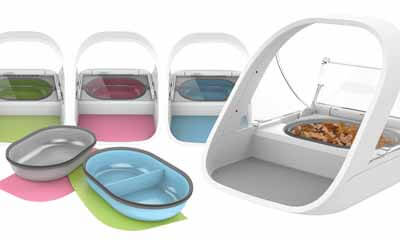 Win a SureFeed Microchip Pet Feeder