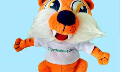 Free Tiger Soft Toy