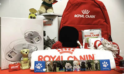 Win Doggy Gifts with Royal Canin