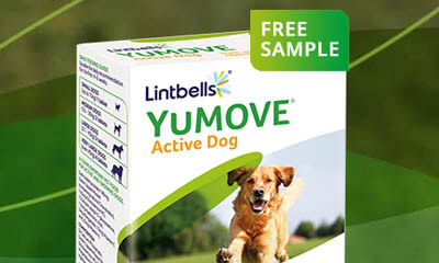 Free YuMove Active Dogs