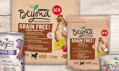 Free Beyond Grain Free Dog & Cat Food